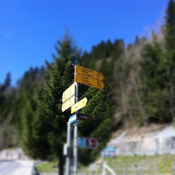 Which trail ?