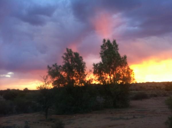 Kalahari 2013