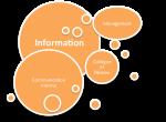 information_socbiz